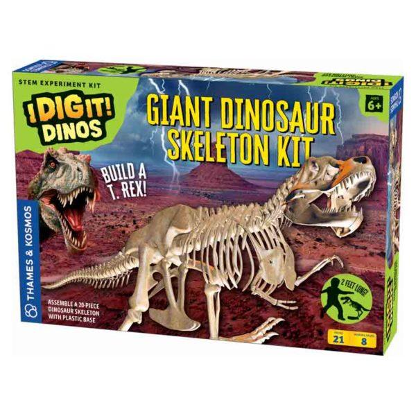 giant dino skeleton