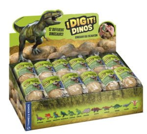 dino egg display