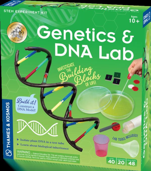 genetics dna